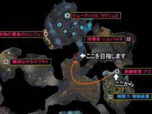 ドラウプニル洞窟 4NMDショートカット(SC) アクバル→ラクシュミ